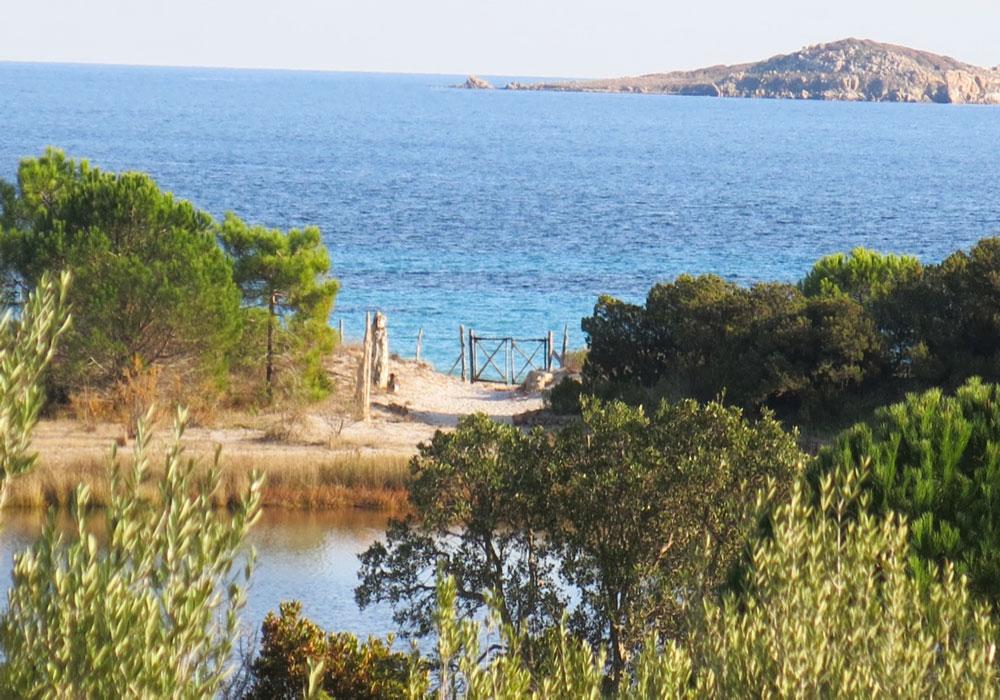 Location de villa de vacances avec piscine chauff e en for Gite corse du sud avec piscine